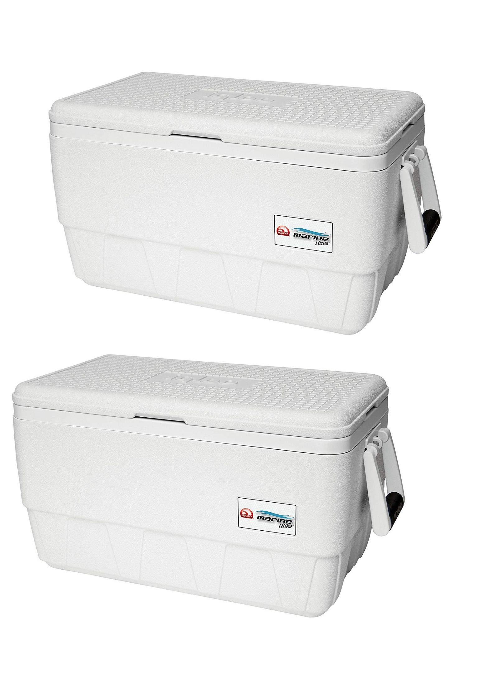 Igloo Marine Ultra 36 Cooler (36-Quart/Pack of 2) by Igloo