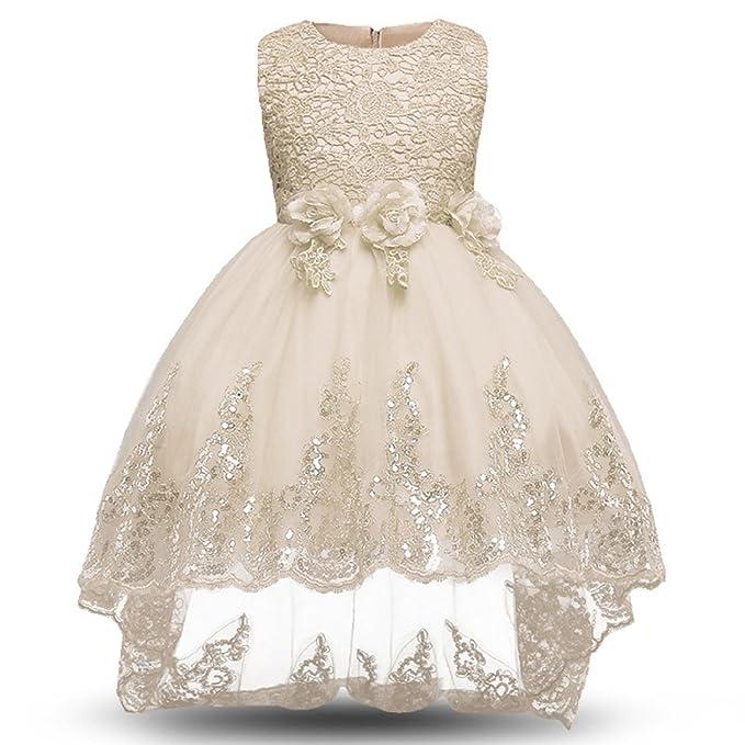 Gold Treasure Bebé Poco Niña Princesa Final Bowknot Flor Encaje Vestido Tul de Dama de Honor