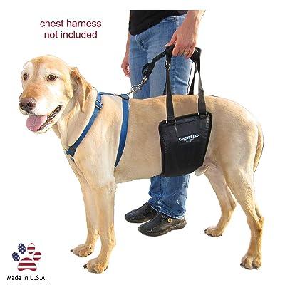 GingerLead Dog Support & Rehabilitation Harnesses