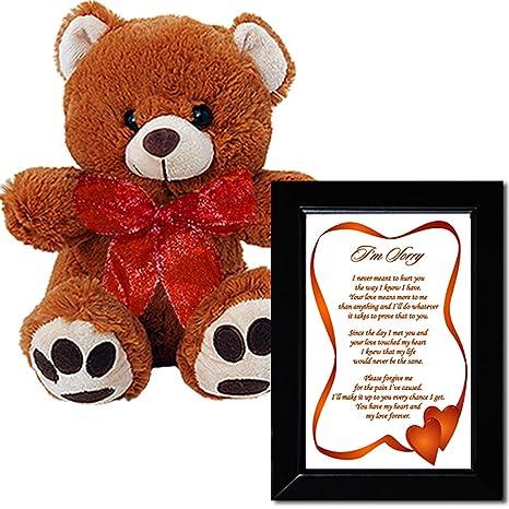 Amazon.com: I\'m Sorry Love Poem and Plush Teddy Bear - Sorry Gift ...