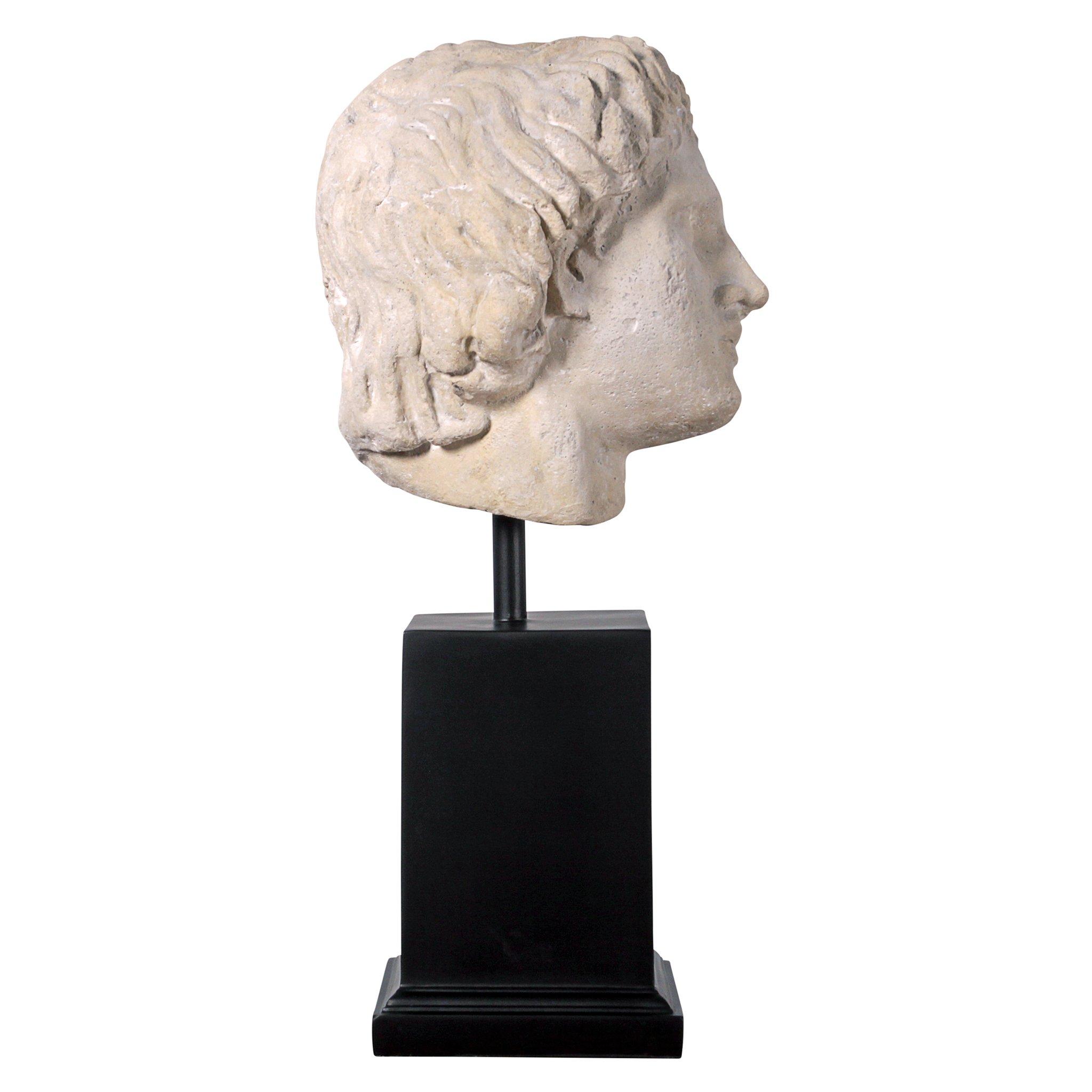Design Toscano Alexander The Museum Mount Sculptural Bust, Antique Stone by Design Toscano (Image #2)