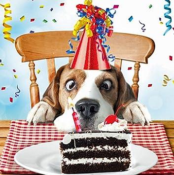 message anniversaire chien