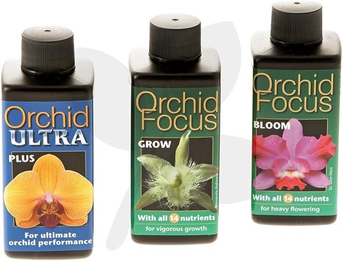 Orchid Focus Gift Pack - Fertilizantes Líquidos para Orquídeas: Amazon.es: Jardín