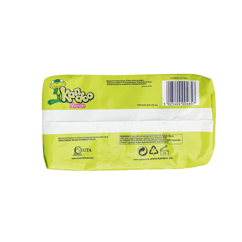 Lot de 3 KANDOO 4 Pack de 55 Lingettes Melon Nouvelle Formule