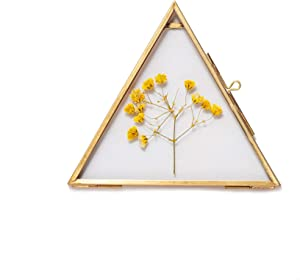 Small Hanging Triangle Herbarium Brass Glass Frame for Pressed Flowers, Dried Flowers, Poster, Double Glass, Floating Frame Style, Glass frame only
