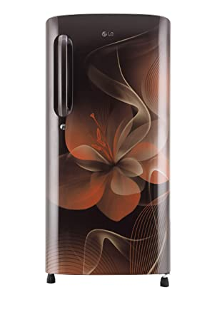 LG 190 L 4 Star Inverter Direct-Cool Single-Door Refrigerator (GL-B201AHDX, Hazel Dazzle)