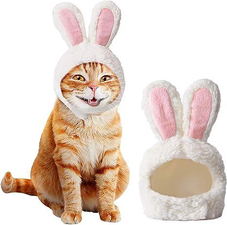 Ducomi Orejas de Gato en Forma de Conejo – Accesorio Disfraz ...
