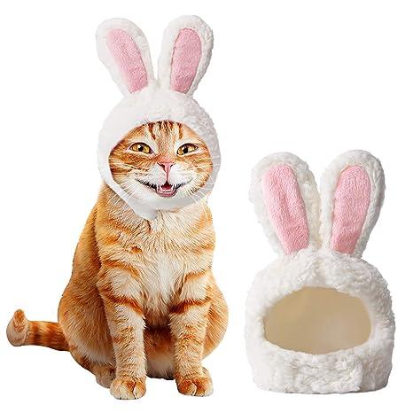 Ducomi Orejas de Gato en Forma de Conejo - Accesorio Disfraz ...