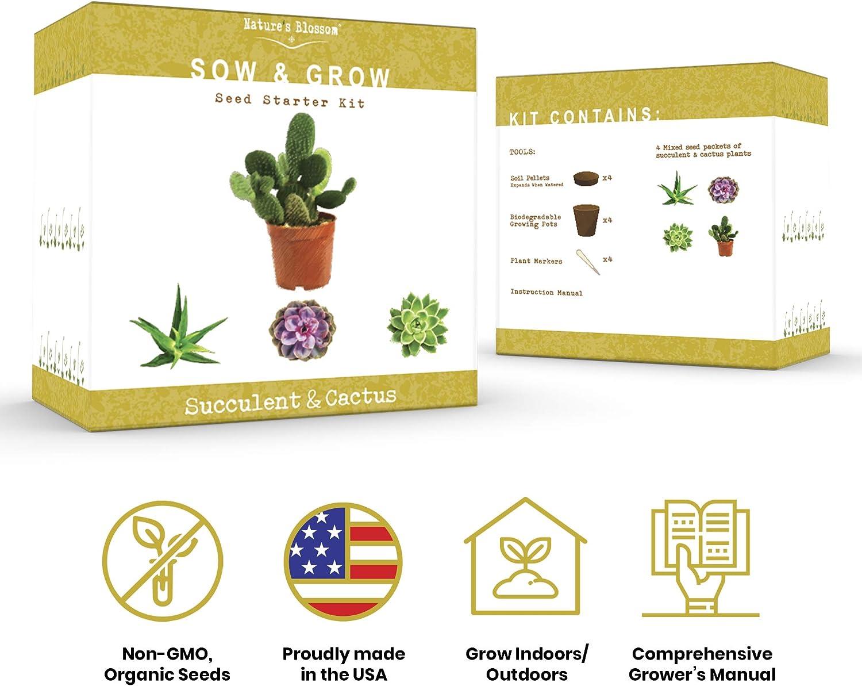 Amazon.com: Kit de cultivo de planta suculenta y cactus de ...