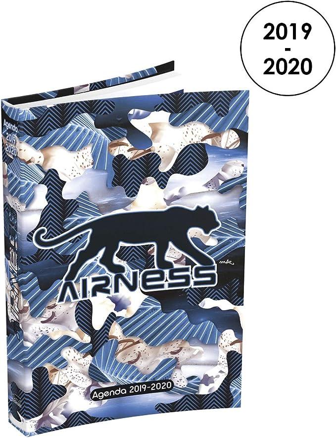 Amazon.com: Airness 2019-2020 - Agenda diaria de agosto a ...