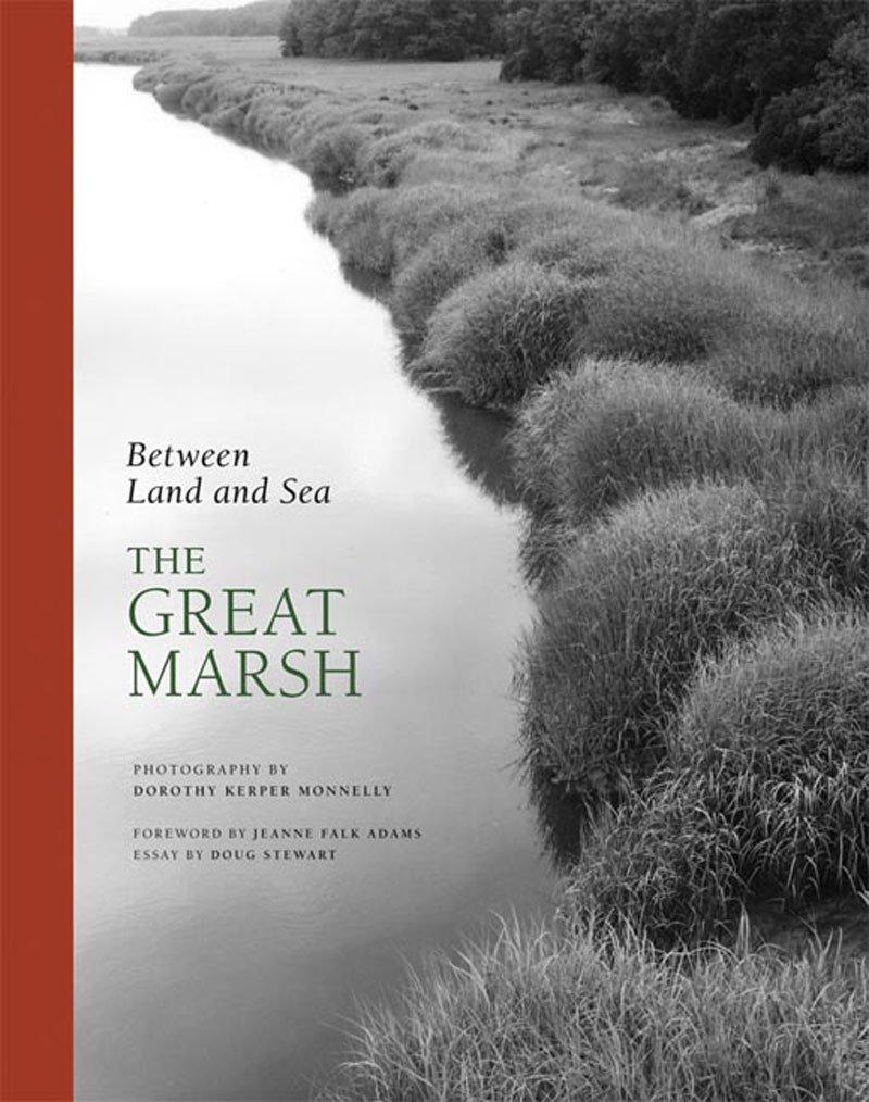 Amazon: Between Land And Sea: The Great Marsh (9780807615782): Dorothy  Kerper Monnelly, Doug Stewart, Jeanne Falk Adams: Books