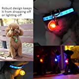 Clip-On Pet, Dog Collar LED Light - Dog Lights for