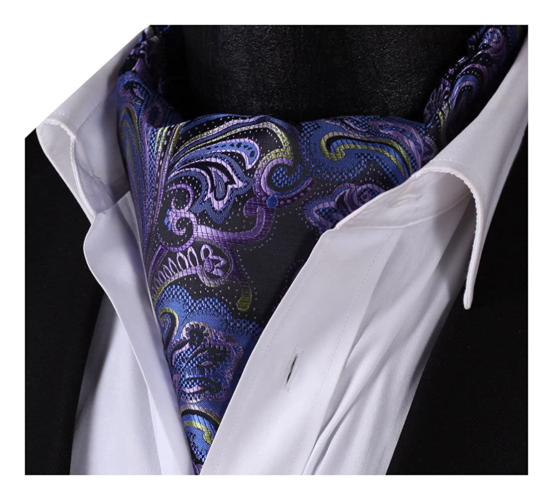 BIYINI Men's Ascot Floral Jacquard Woven Gift Cravat Tie RF401A-QW