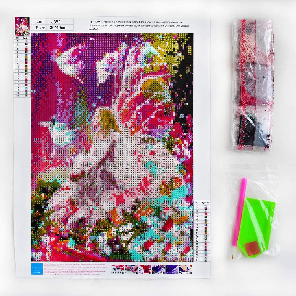 5D Diamond Painting Kits Full Drill Diamond Embroidery 12x16, Elves