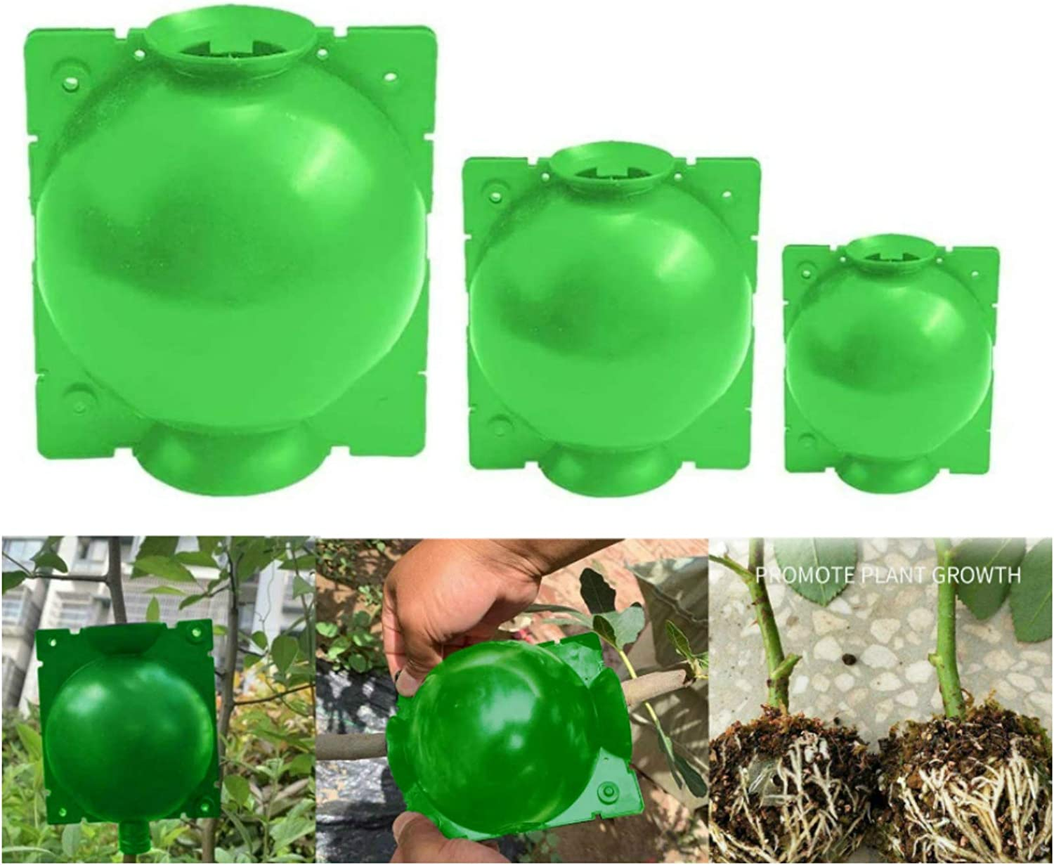 Plant Root Growing Box, 3 Pack Reusable Propagation Device for Root Grafting kit,Green