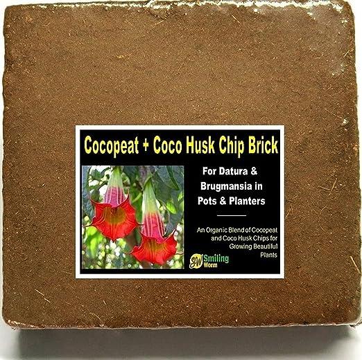 Smiling Worm – Plantas Maceta Plantas de Jardín, de tierra, tierra para macetas, Coco Fibre Brick bloque