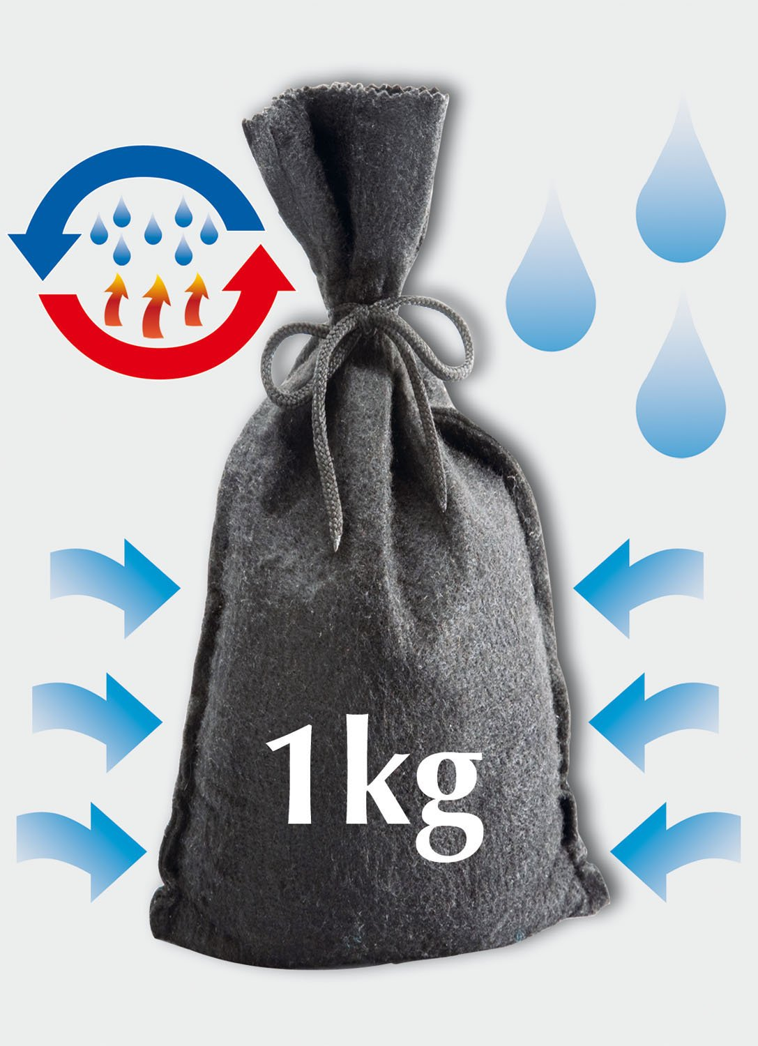Wenko 77799100 - Bolsa absorbe humedad re utilizable, absorbe hasta 850 ml (1 kg, 17 x 25 x 10 cm), color antracita: Amazon.es: Hogar