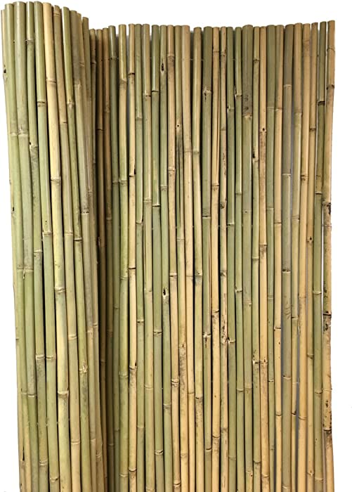"Master Garden Products BWF-48 Tonkin Bamboo Fence, 3/4"" Diameter Poles, 8'L x 4'H, Yellow"