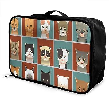 Amazon.com: Bolsas de viaje con dibujos animados de rana ...