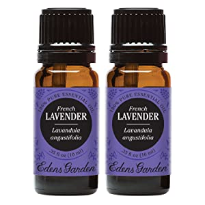 Edens Garden Lavender French Essential Oil, 100% Pure Therapeutic Grade (Aromatherapy Oils- Inflammation & Pain), 10 ml Value Pack