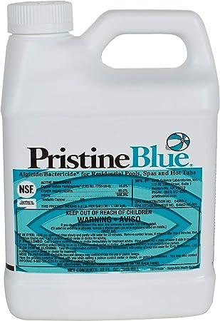 Amazon Com Pristine Blue 32 Ounce Swimming Pool Maintenance Kits Garden Outdoor