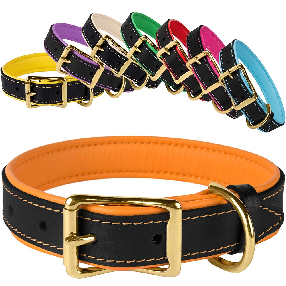 Black orange Neck Size 11\ Black orange Neck Size 11\ BronzeDog Leather Dog Collar Soft Padded Pet Collars for Dogs Brass Buckle Puppy Small Medium Large Black Pink bluee Red Green Purple Beige (Neck Size 11 -12 , Black orange)