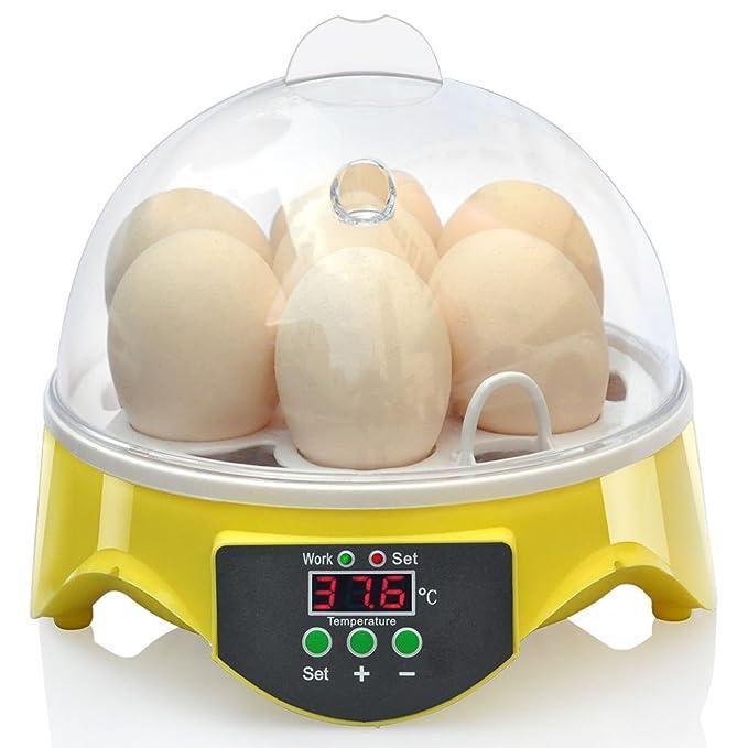 12 opinioni per ColorMax Mini Incubatrice Covatutto Digitale Automatico, 7 uova