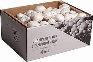 SETAS MELI   Kit Auto Cultivo Champiñon Paris   Para cultivar en casa   Crece en 14 dias   Kit perfecto para regalar   Hecho en España: Amazon.es: Jardín