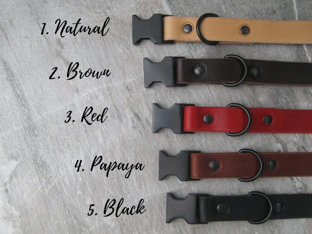 Quick Release Leather Dog Collar with Black Metal Hardware and Free ID Tag Ideal for Large and Medium Dogs Colorful Leather Dog Collar 5 Leather Colors