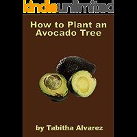 How to Plant an Avocado Tree (English Edition)