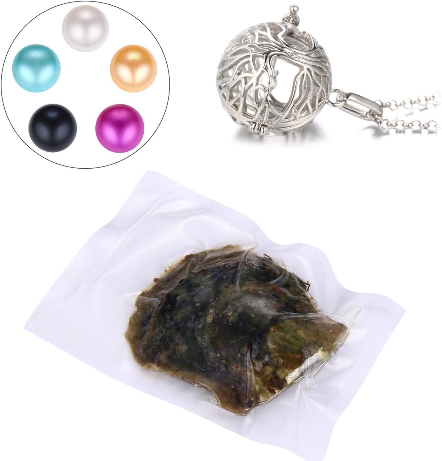 HengSheng 5pcs Cultured Pearl mejillones (6 – 7 mm) en Oyster Set ...