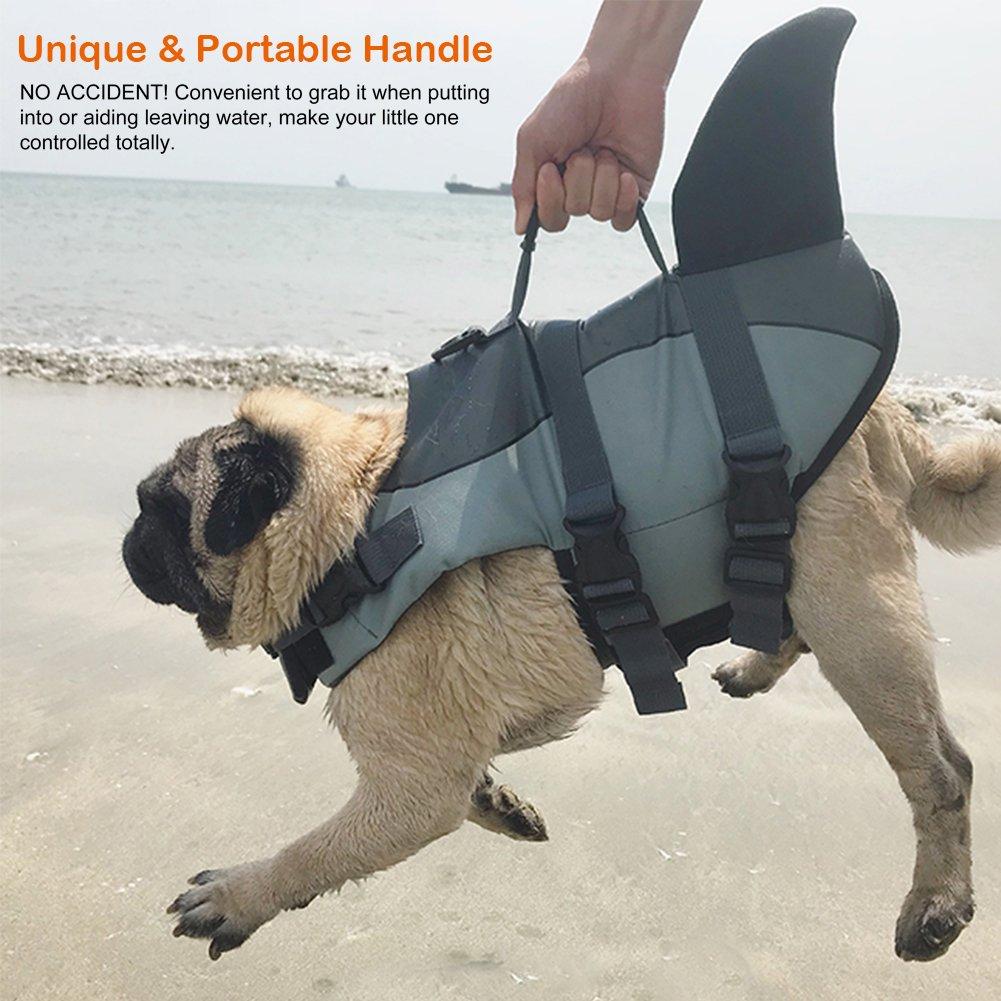 Petacc Chaleco Salvavidas para Perros Vestido Salvavita para Perros, Estilo Tiburón, Gris, L: Amazon.es: Productos para mascotas
