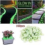 JJOnlineStore - 100 x ciottoli fluorescenti per giardino e acquario, colore: bianco/verde