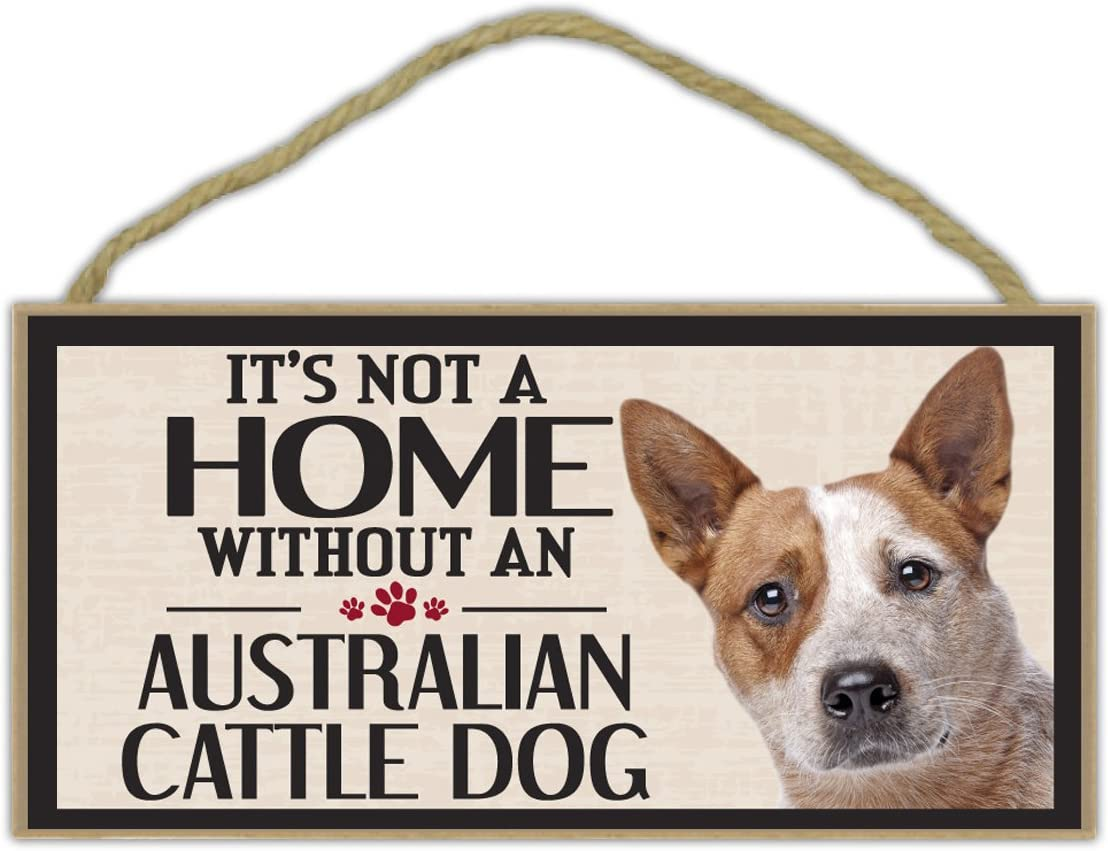 Wood Sign Gifts It/'s Not A Home Without A HAVANESEDogs Decorations