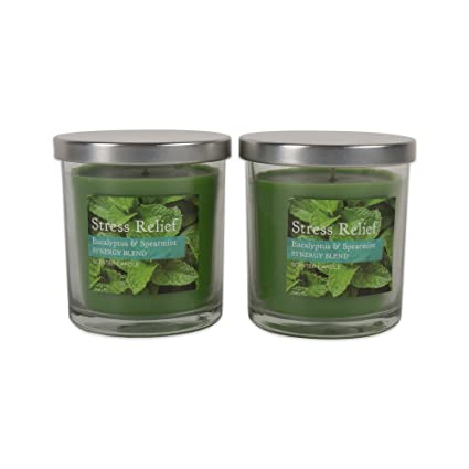 Home Traditions Single Wick Evenly Burning Highly Scented Stress Relief Jar  Candle, Set of 2 (8 Oz Each) - Eucalyptus Spearmint Synergy