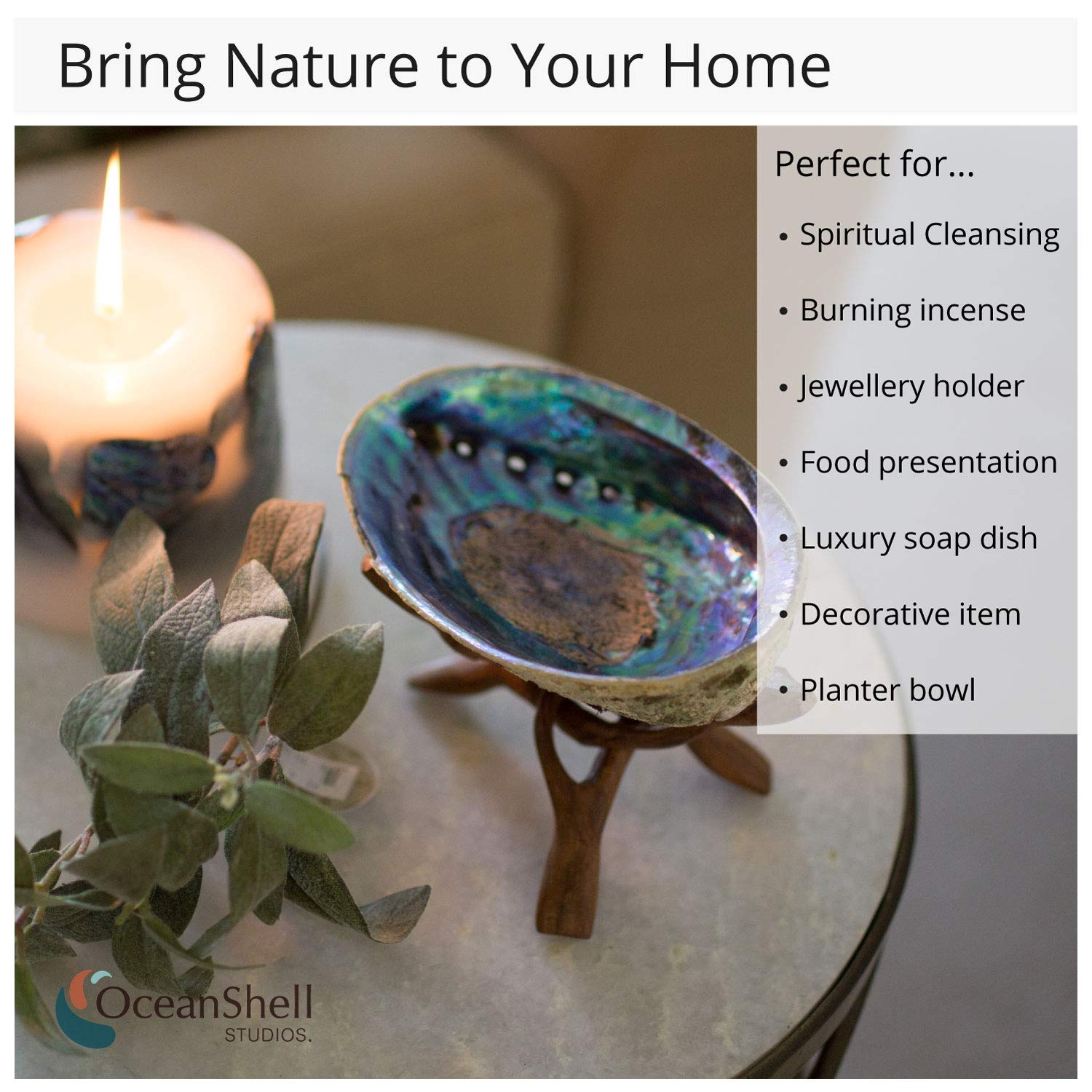 Ocean Shell Studios Premium Natural Abalone Shell Extra Large 6''- 6.5'' with Wooden Stand, for Smudging, Cleansing Home, Meditation, Shell Crafts, Home Décor, 100% Natural, Gift Box by Ocean Shell Studios (Image #5)