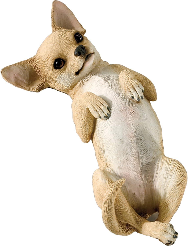 Original Size Blanc R/ésine Sandicast Sculpture Chihuahua Marron Clair Taille Originale