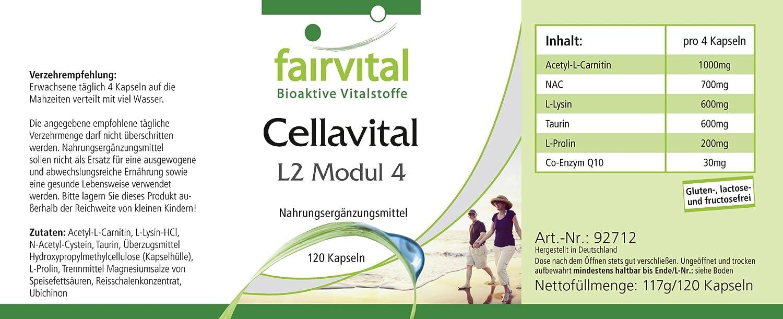 Cell Avital - Altamente dosificado - 120 cápsulas - Antioxidantes en complejo con acetil-L-carnitina, taurina, Q10 y más - ¡Calidad Alemana ...