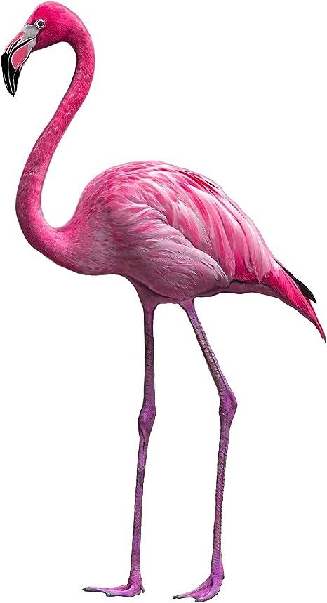 Giant wall sticker 130 x 100 cm-pink flamingo