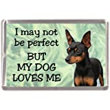 """Inuit Dog Fridge Magnet /""""I may not be perfect BUT MY DOG LOVES ME/"""" by Starprint"""