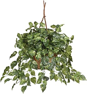 """Nearly Natural 6517 Pothos Hanging Basket Decorative Silk Plant, Green,29"""" x 10.25"""" x 10.25"""""""