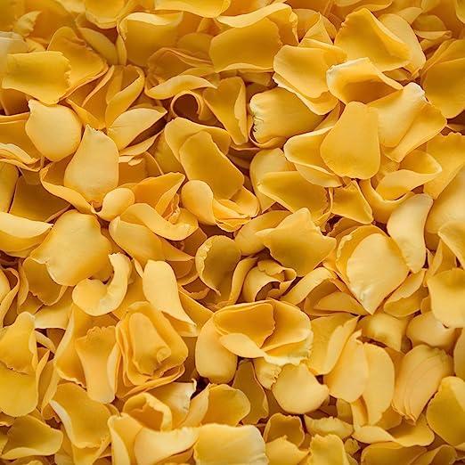 Confeti de pétalos de rosa biodegradable para bodas (Amarillo, 2 ...