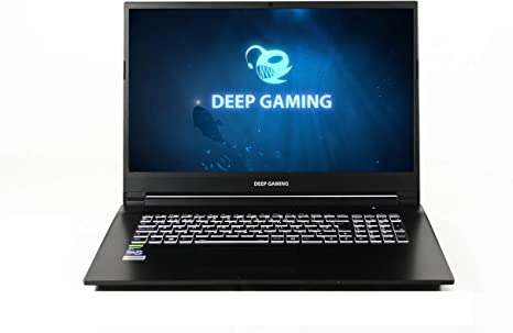 DeepGaming Exegon - PC Gaming portátil 17.3