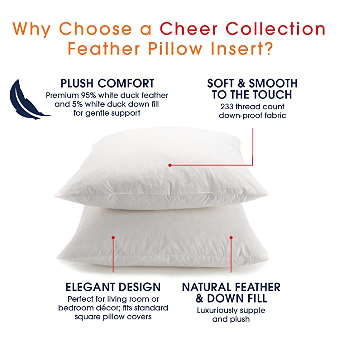 715bnMtzi4L._SX679_ amazon com cheer collection set of 2 down and feather throw pillow
