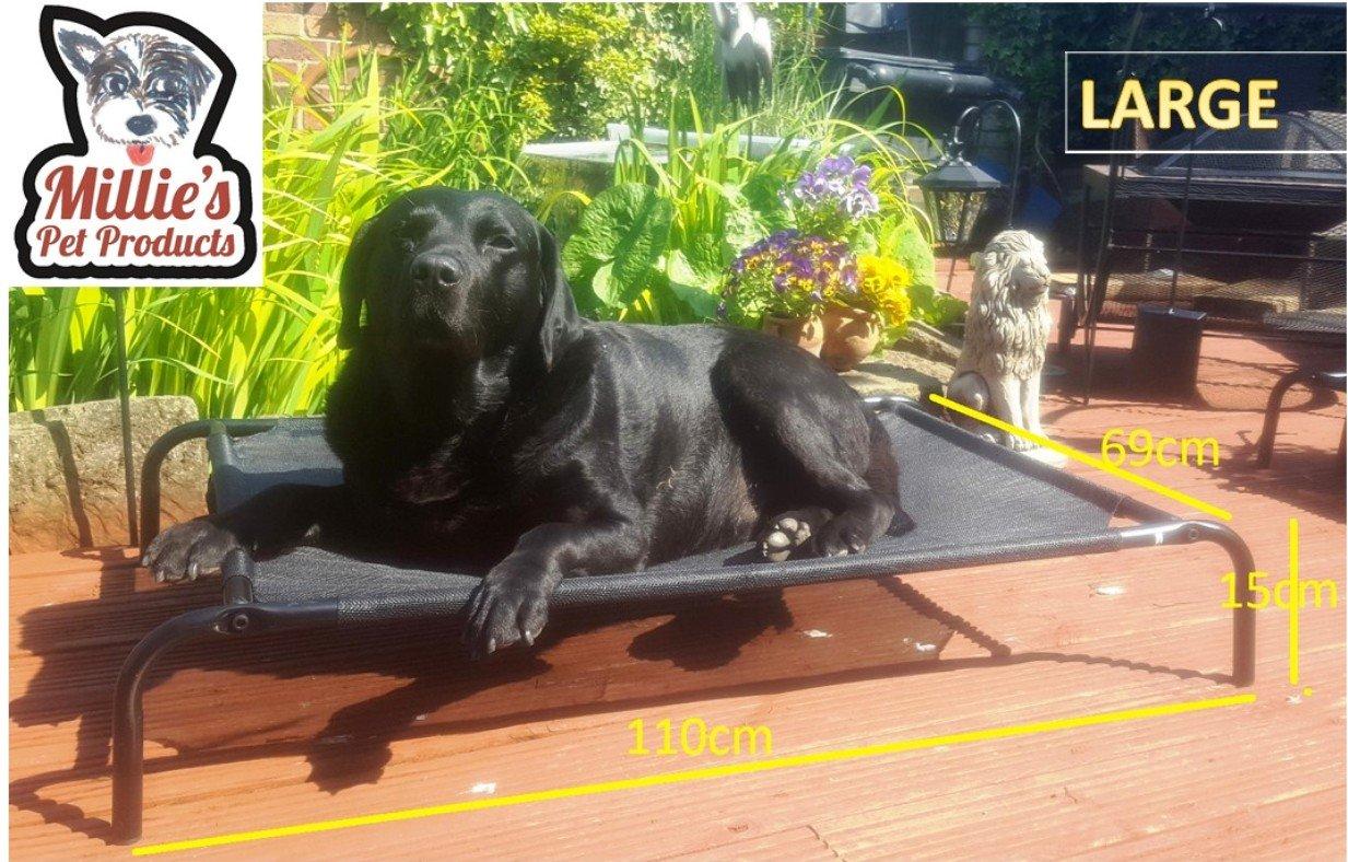 Miilies Pet Products - Cama elevada para perro, portátil, impermeable, para exteriores, cesta para mascotas: Amazon.es: Productos para mascotas