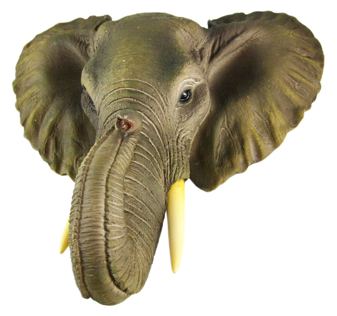 Amazon african elephant head mount wall statue mini bust 9 in amazon african elephant head mount wall statue mini bust 9 in home kitchen amipublicfo Gallery