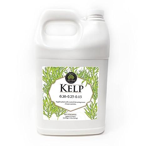 Age Old Kelp Liquid Fertilizer - 1 Gallon Bottle