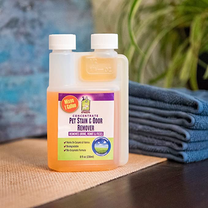 Pet orina Manchas y olor enzimática Concentrate por Doggone mascota productos - permanentemente eliminar perros & gatos vomitar, heces y orina.