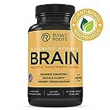 Brain (Holistic Nootropic Herbs) - Lions