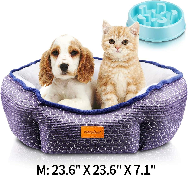 Cama Para Perros y Gatos, Cama para Mascotas con Suave Cojín Desmontable, Lavable a Máquina, Sofá Cama para Gatos y Perros Pequeños y Medianos (M: 60 * 60 * 18 cm) + Comedero Lento Para Perros
